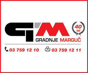 GMI 6 2020