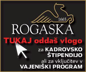 Steklarna Rogaška 1 2021